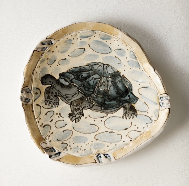 Galapagos tortoise charger